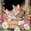 Art Kittens Jigsaw 2
