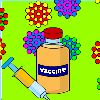 Bird Flu - Vaccinating